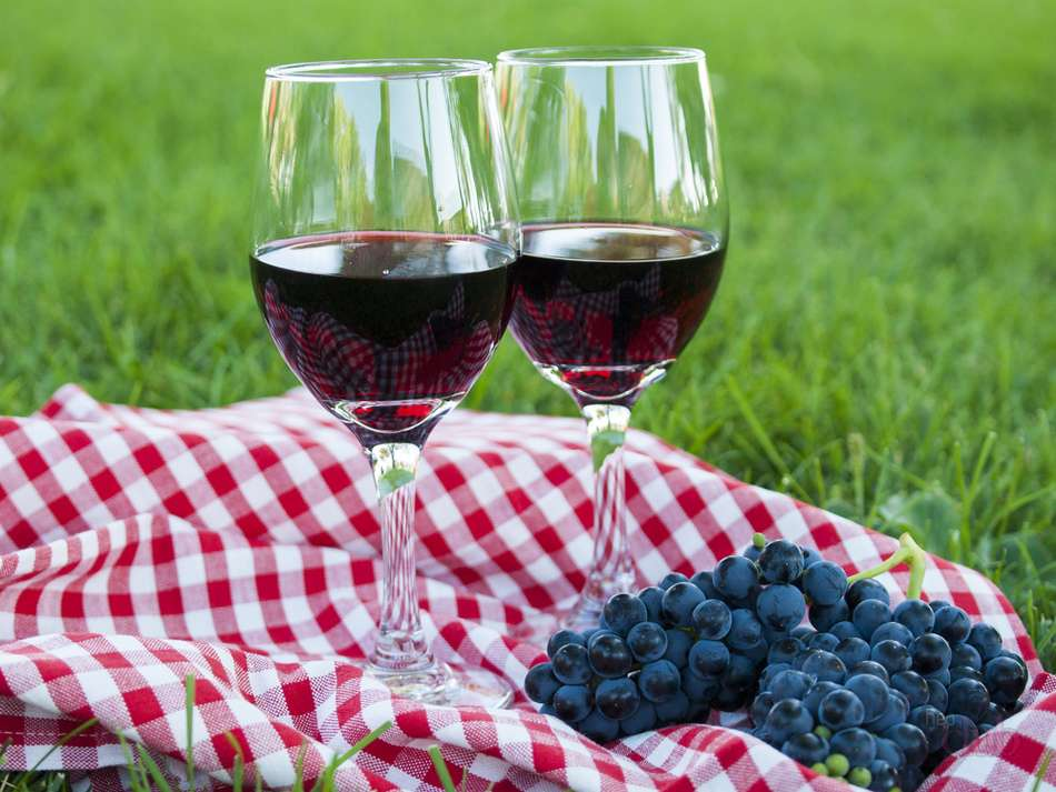 Как делать вино из изабеллы